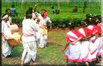 tea folk jhumar nach