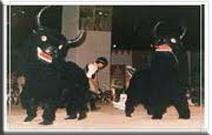 yak chaam